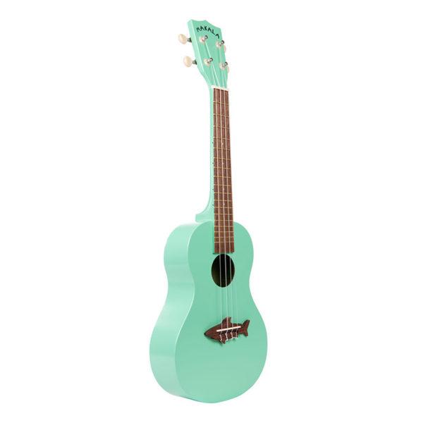 اوکولهله-کنسرت-ماکالا-سری-کوسه-سبز-(5)